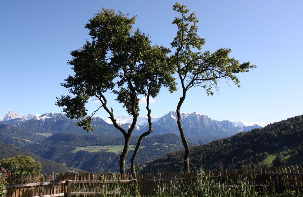 Vacanze primaverili in montagna